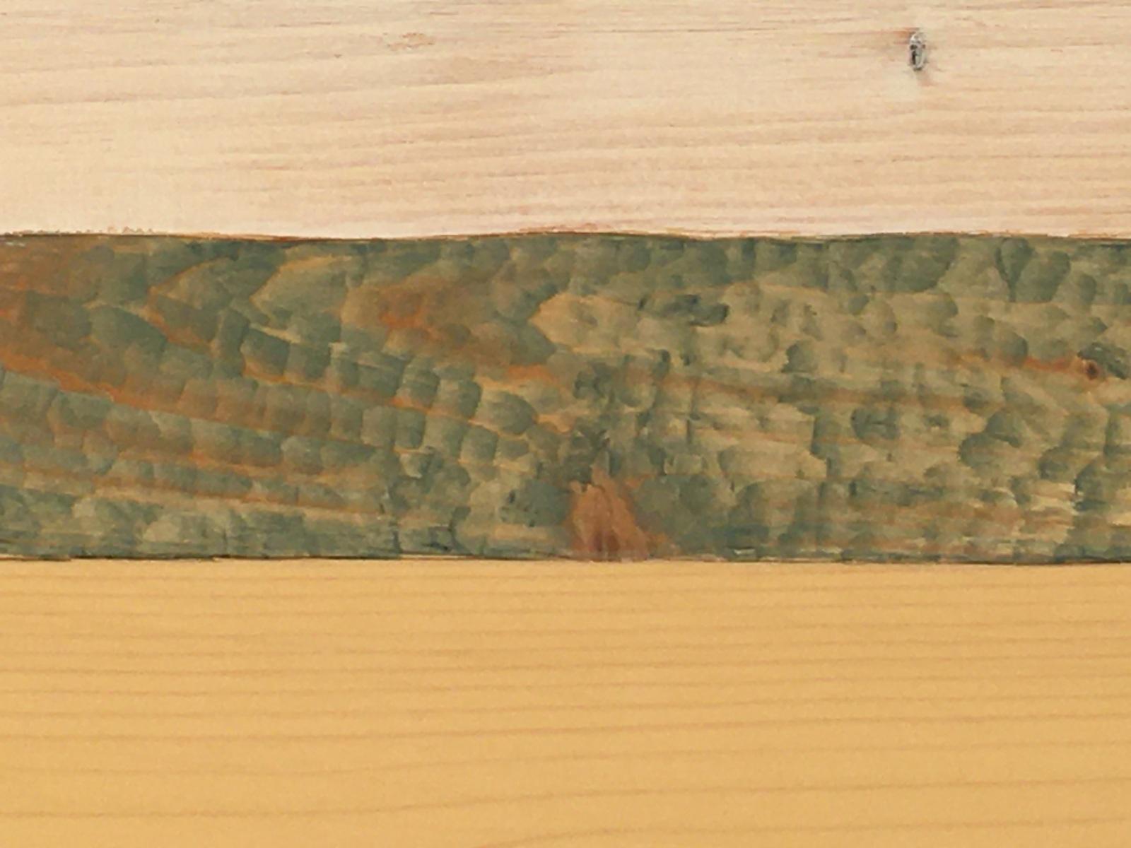 detail.carvingrivergull-box