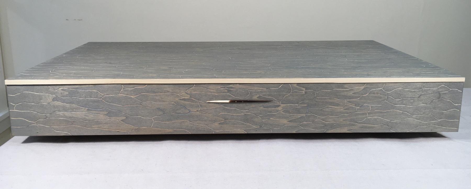 Pandora-Box-NorthAmerican-Porcupine-DangerMan.closedcropped